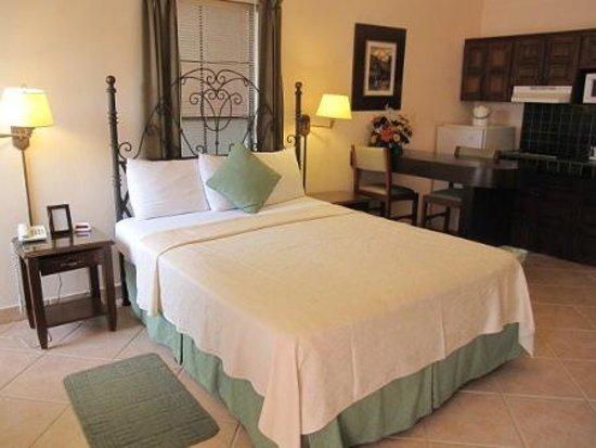 Hotel El Almendro Managua: Habitación estudio