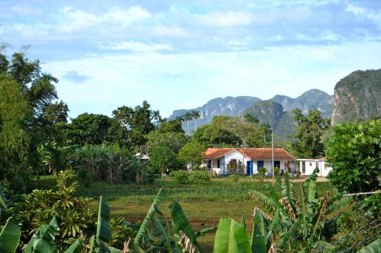 Casa Particular Ridel y Claribel: Vue de la terrasse