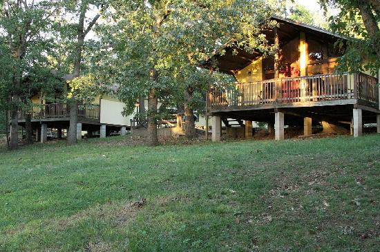 Golden Arrow Resort: Our cabins offer a natural setting where you can view deer and other wildlife.