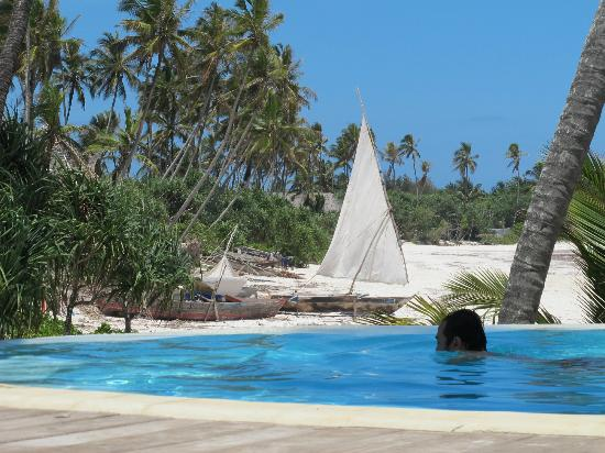 Green and Blue Ocean Lodge: Infinity pool
