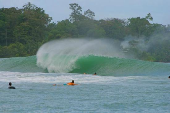 Hotel Bocas del Toro: Surfs up at Ponch on Isla Colon