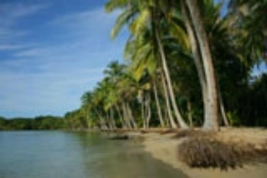 Hotel Bocas del Toro: Secluded beaches on Isla Colon