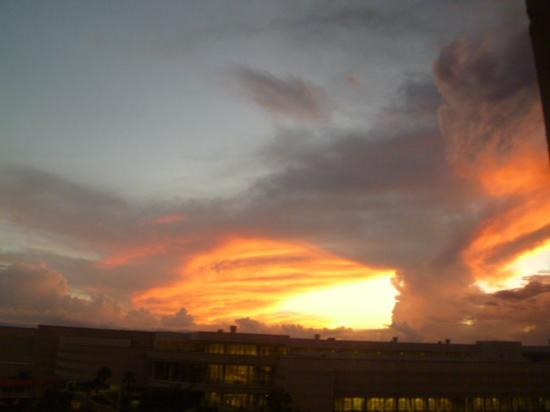 Rosen Centre Hotel: Beautiful sunset from room window