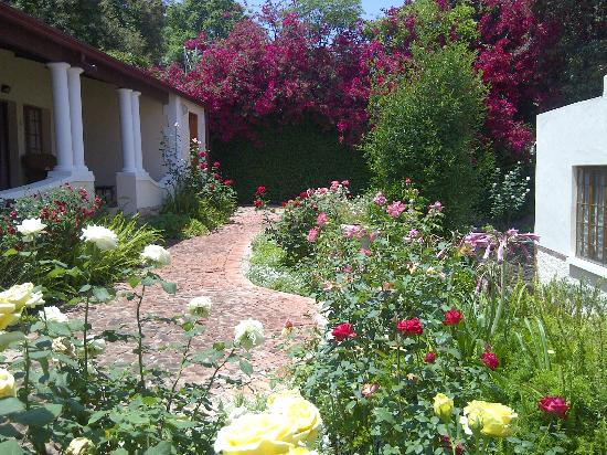 Melvin Residence Guest House: Garden outside guest rooms
