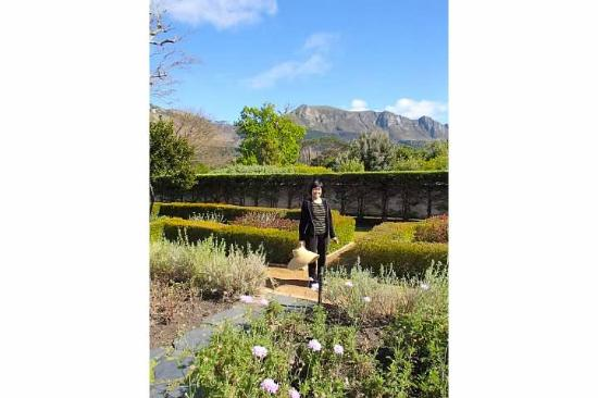 Steenberg Hotel: A peacefull walk in a beautiful setting at the hotel grounds - this also the view we see from ou