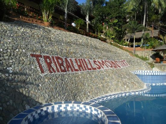 Tribal Hills Mountain Resort: pool view