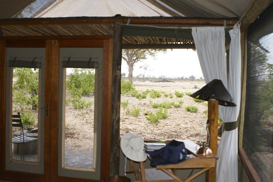 Wilderness Safaris Little Makalolo Camp : View from Tent
