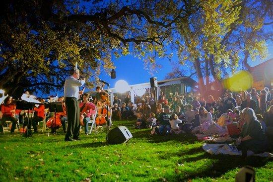Ojai Valley Inn & Spa: Tree Lighting 2012
