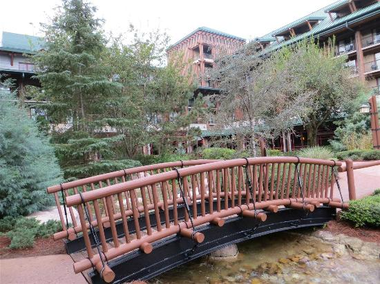 Disney's Wilderness Lodge : View from the pool