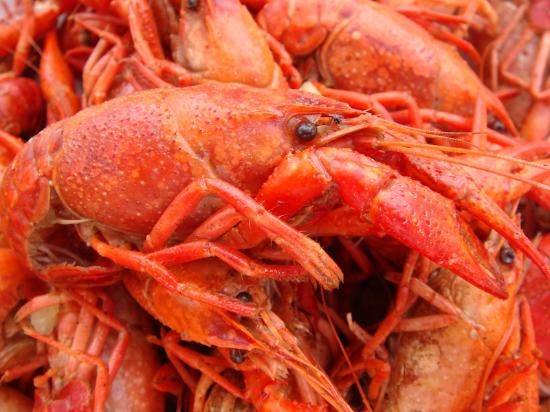 De Happy Cajun: Crawfish!