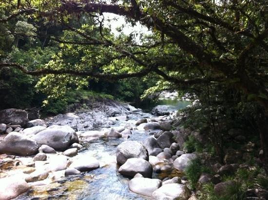 Mossman Gorge: pristine