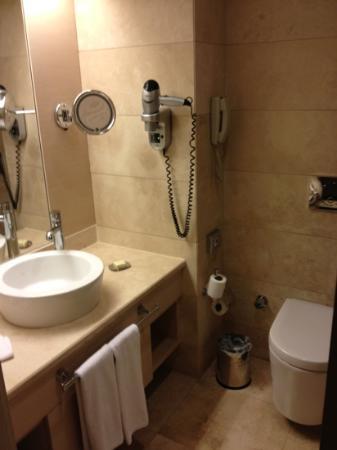 Crowne Plaza Hotel Ankara: bathroom