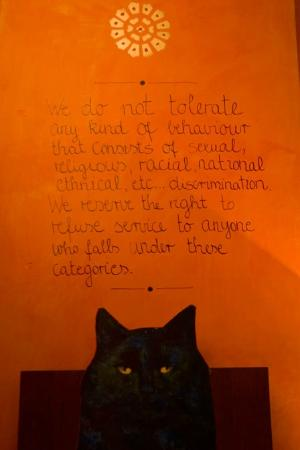 Stray Cat Hostel: their philosophy