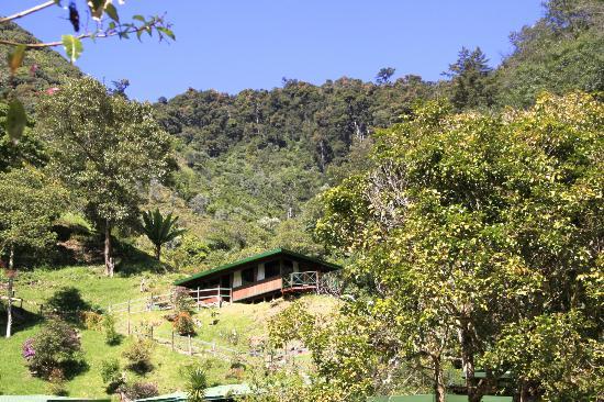 Trogon Lodge San Gerardo de Dota: top of the valley