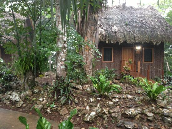 Mariposa Jungle Lodge: One of the Cabanas
