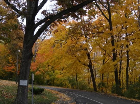 Manner's Park: park in Oct 2012