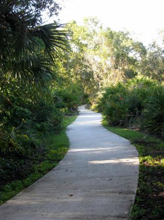 James E Grey Preserve : trail