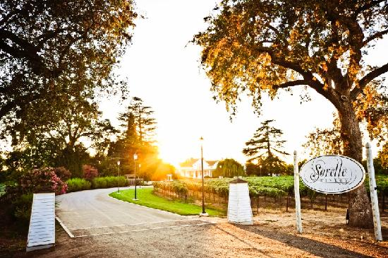 One of over 80 wineries in Lodi, CA