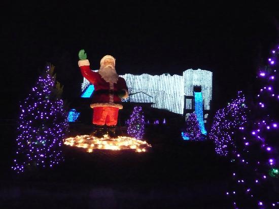 Santa Lights Picture Of Busch Gardens Williamsburg Williamsburg Tripadvisor
