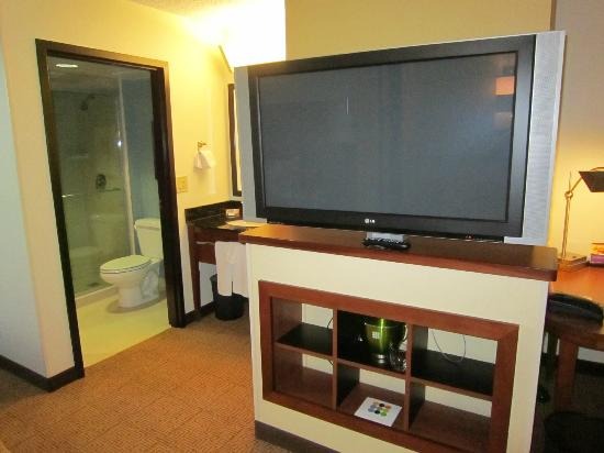 Hyatt Place Fort Lauderdale / Plantation: tv and bathroom