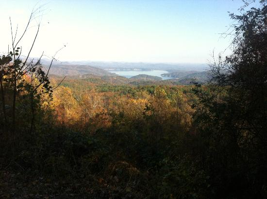 Cabins at Seven Foxes: View of Lake Jocassee