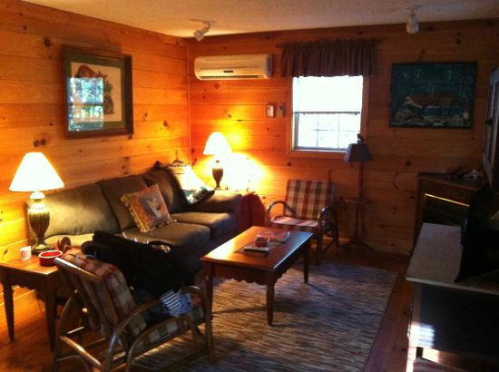 Cabins at Seven Foxes: Living Room