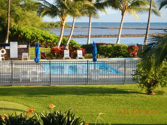 Castle Molokai Shores: pool and splash pool