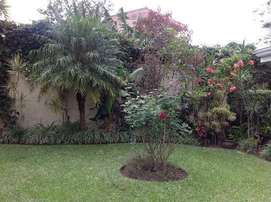 كازا إيزابيلا كوستاريكا: Front Yard 