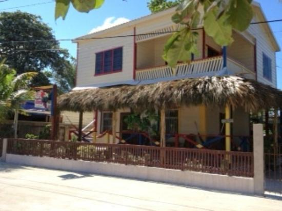 De Real Macaw: Beach front  house