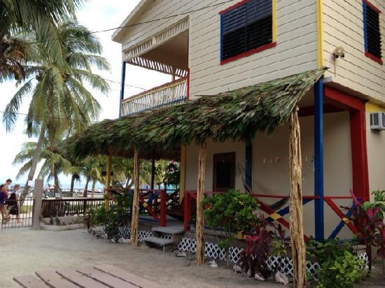 De Real Macaw: Beach front rooms