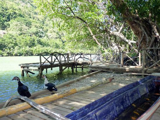 Palawan Mangrove Resort: River Deck