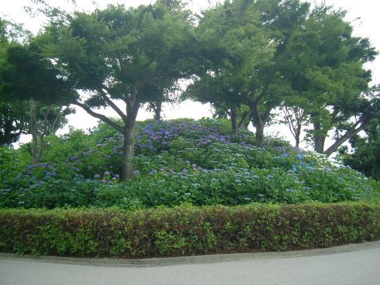 Otsuka Tomb: 2012年 6月 古墳はこんな感じ
