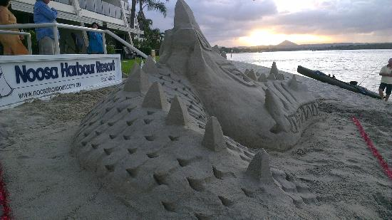 ‪نوزا هاربور ريزورت: Noosa Harbour Resort sand sculpture
