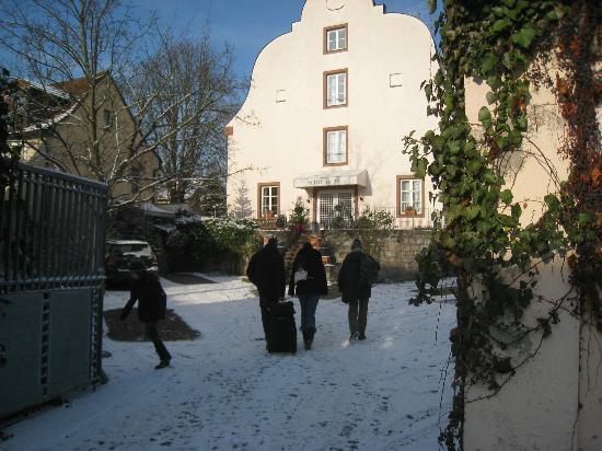 Hotel am Main: Innenhof/Parkplatz