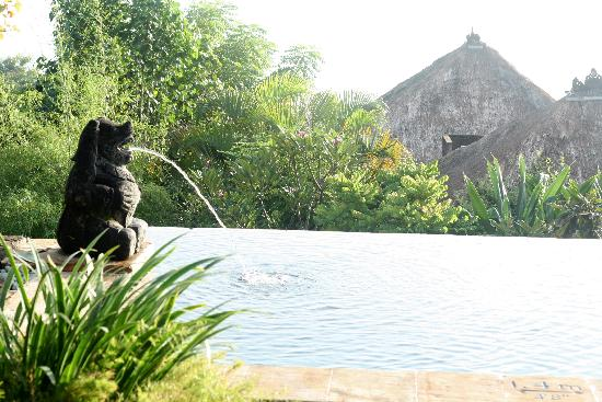 Four Seasons Resort Bali at Jimbaran Bay: plunge pool