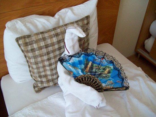 Sultan Sipahi Resort: Vores værelse