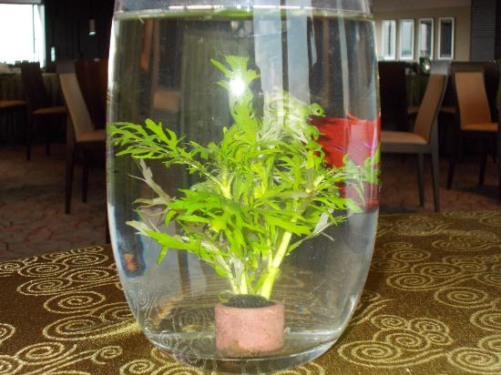 Pine Court: Table deco - gold fish in vase