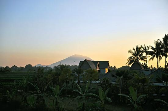 Furama Villas & Spa Ubud: The breathtaking view from a deck within the hotel ground.