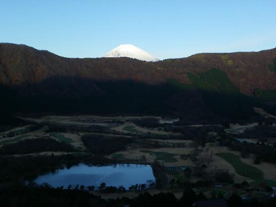 Palace Hotel Hakone: fuji view