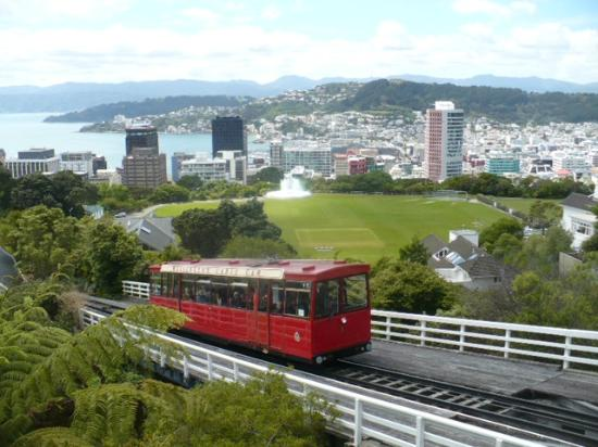 Wellington Botanic Garden: Narrow gauge train up to Botanic Gardens