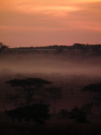 Great Plains Conservation Mara Plains Camp: Sunrise in paradise