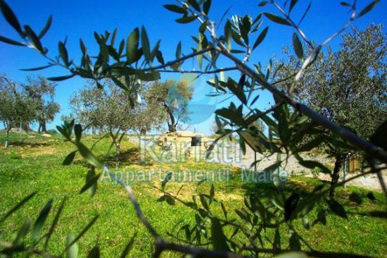 Kariati Appartamenti Mare : Tomba Bretia