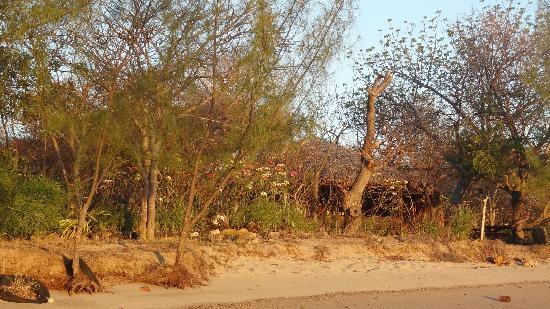 Les Flibustiers : La nature à l'état pur