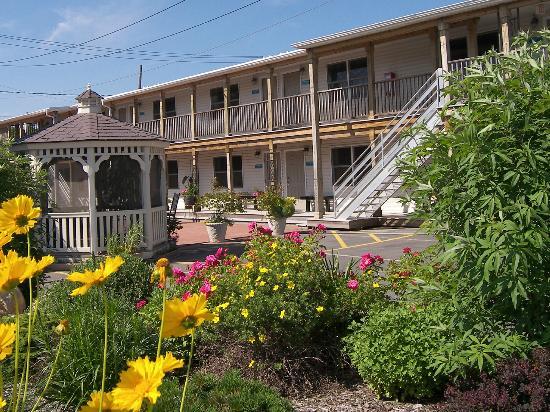 Heron Suites: Courtyard