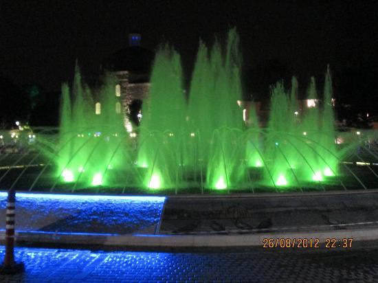Sultanahmet Wijk: Fontana di fronte alla Moschea Blu