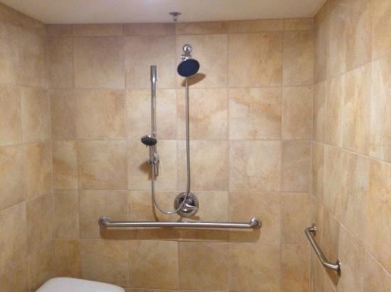 Hilton Jackson: Accessable shower. Two bathrooms in this room