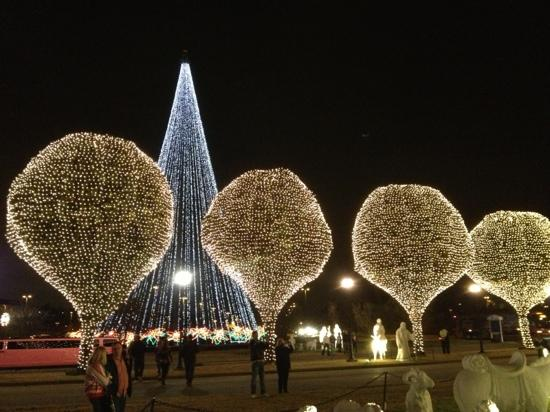 Christmas lights! - Picture of Gaylord Opryland Resort & Convention ...