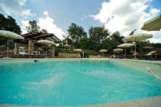 Tenuta Casteani Wine Resort: piscina idromassaggio e angolo bar