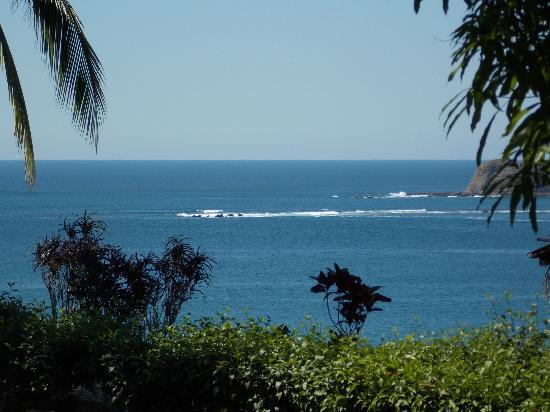 Hotel Guanamar: view
