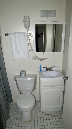Metro Apartments: toilet